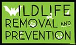 Wildlife Removal 911 - Hampton Roads Virginia
